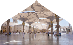 Economy Plus Umrah package 28 days