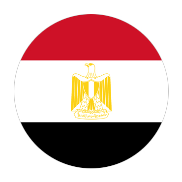 Egypt Visa Flag