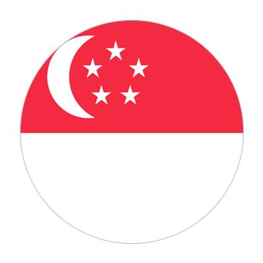 Singapore  Visa Information
