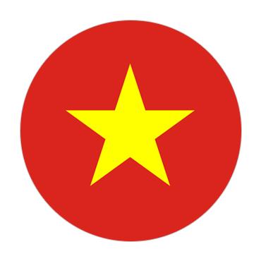 Vietnam Visa Flag